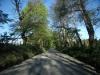 camino-quilaco-rucalhue