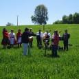 El día Sábado 08 de Octubre se realizó la Fiesta Costumbrista de la Cruz del Trigo en el sector de...
